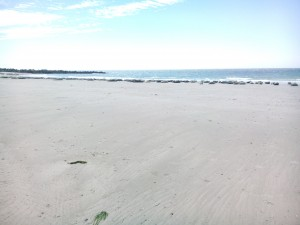 Sälar Dune