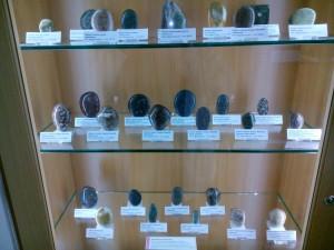Fosiler och stenar en del kom från Sverige. Museet Helgoland