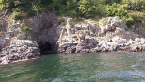 Grotta vid heligdomklipporna
