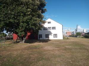 byggnad konserven gråen Landskrona