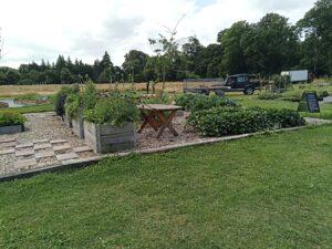 trädgård på baksidan av plantskolan på krapperup