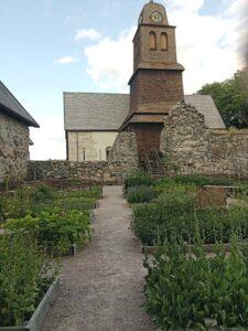 örtaträdgård Nydala kloster